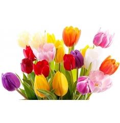 С первым днем ...бесплатной доставки ) и Весны )