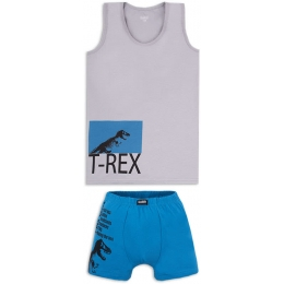 Комплект белья Габби T-Rex Серый с синим
