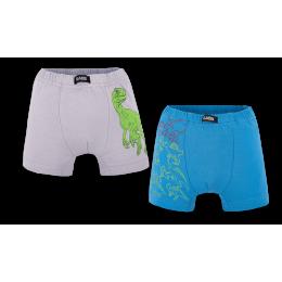 Детские трусы-шорты для девочки SHM-20- 3  в подарочной упаковке (2 шт.)