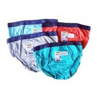 Трусы-шорты Габби SHM-19-22 4 шт Разноцветные
